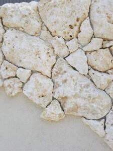 琉球石灰岩